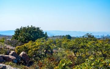 Preservação ambiental em Angola